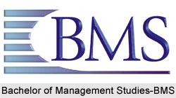 Whats bms stand for